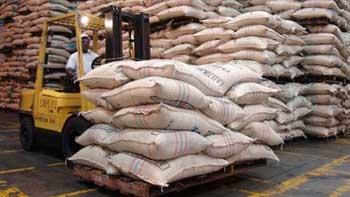 PRODUCCIÓN DE CAFÉ DE COLOMBIA CRECE 5,4% EN LO CORRIDO DEL AÑO