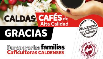 SUPÍA, ANSERMA Y RISARALDA, EN EL CUADRO DE HONOR DEL CAFÉ DE CALIDAD