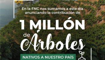 FEDERACIÓN ANUNCIA LA SIEMBRA DE 1 MILLÓN DE ÁRBOLES NATIVOS