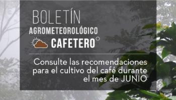RECOMENDACIONES DEL BOLETÍN AGROMETEOROLÓGICO DE CENICAFÉ