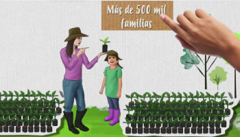 CONTINÚA LA CAMPAÑA PARA ERRADICAR EL TRABAJO INFANTIL